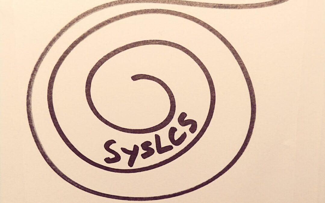 Systemiskt ledarskap och företagande